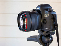 Canon 85mm comparison test